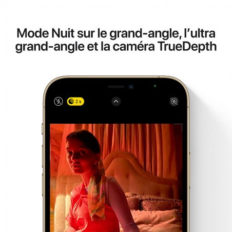 iPhone 12 Pro Max - Or - Mode nuit