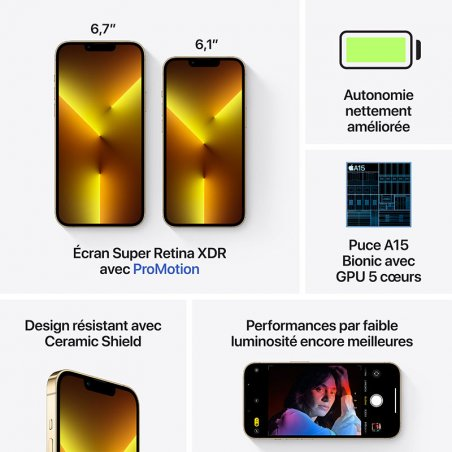 accessoires iPhone 13 Pro or