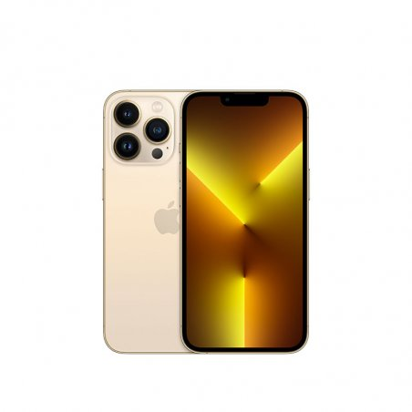 iPhone 13 Pro or