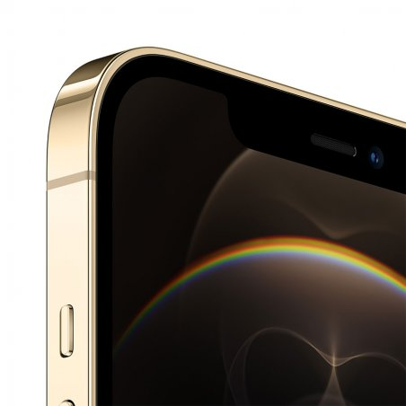 iPhone 12 Pro Max - Or - Détail